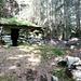 Alte Siedlung im Wald auf Koord 710760/137080 - sogar auf der LK in Vergessenheit geraten