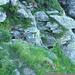Aufstieg zum Mezzodi - felsige Abschnitte blau/weiss korrekt markiert (T4)