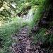 Il bel sentiero diga -> Lanes