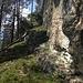 Einstieg zur Steilwand
