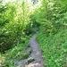 Spitzkehre auf dem bekannten <i>Sentiers des 14 Contours</i> zwischen Les Oiellons und Pertuis de Bise: In 14 Spitzkehren erklimmt man 350 Höhenmeter bis an den Klusrand des Creux du Van.