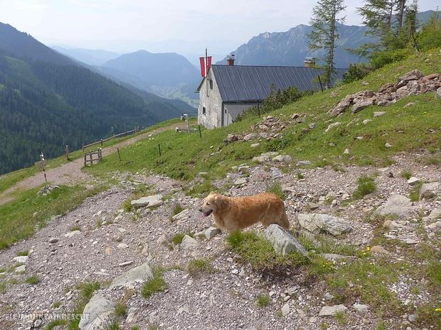 Stärkung bei der Leobnerhütte