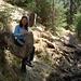 Una comoda sedia nella foresta