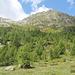 """il Rüscada visto dal Corte di Cima dell'Alpe Fontana. <br />il canale di accesso si trova alla base della """"V"""" formata dalle due creste a sx della vetta"""