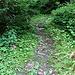 schlüpfriger Abstieg auf dem Römerweg