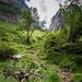 Zwischen Alp Klein-Hütten und Bogartenlücke