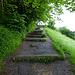 Die Schlüsselstelle der ganzen Tour - steiler Treppenweg (Schwedensteig).