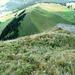 Chammhalde von oben - gut sichtbar der Gratweg