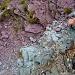 Bunte Steine unterhalb des Wissmeilen