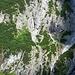 sehr spannend aussehender Zick-Zack Weg von der Lünersee-Talstation, fast senkrecht die Wand hoch - offiziell ist der aber kaum