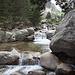 Auch im oberen Tal bildet die Restonica schon stattliche Gumpen