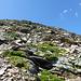 Unterwegs in der steilen, fesligen Ostflanke des Hohen Rades