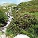 Aufstieg ins Val Cadlimo