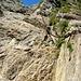 Mit Ketten entschärfte Passage im Abstieg zur Chelenalphütte.