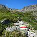 Die Hänge unter dem Madrisahorn sind überwuchert mit Alpenrosen, Heidelbeeren und Wacholdersträuchen.