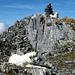 Gipfelhunde Mittler Griessstock.