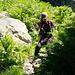 Steil bergab durch saftiges Grün