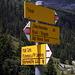 Die Abkürzung von Rubi Sura kommt hier in Rubi Sut mit der Alpstrasse aus dem Val Frisal zusammen