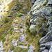 Zwischen Alpe Scinghino und Campala - Schlüsselstelle mit abweisender Wand