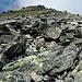 Jetzt wird's steiler und alpiner: durch diese Blockhalde geht es jetzt hinauf, im Hintergrund sieht man schon die Gipfelflanke