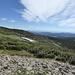 Im Aufstieg, Blick von der Ostseite am Mount Audubon