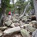 Der übliche Anstieg über ein Boulderfield