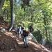 """Il bellissimo bosco nel quale si sviluppa il """"Sentiero delle sculture"""""""