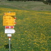 Pra grond (1672m.) Un pannello indicativo fortunato: guardate il campo nel quale si trova!