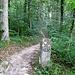 Alte Grenzsteine von 1839 am Firstweg zwischen Maria Tann und Herrentisch<br /><br />mehr dazu in einem [http://zickzack-grenze.blogspot.de/ Blog]