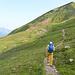 Wir bleiben vorerst oben und marschieren durch grüne Bergflanken.