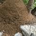 Riesige Ameisenhaufen in der Nähe von Vicosoprano