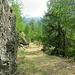 Waldweg (östl. Talseite) zwischen Täsch und Attermenzen