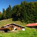 Alp Schäri