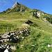 Routenverlauf zum Pfaffen von Walop P. 1667: entlang dem Zaun zur Geröllrinne und nach nach rechts auf den N-Rücken
