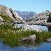 Abstieg ins Calnegia - Wollgras unterhalb des oberen Lago Formazzöö 2251m