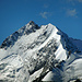 Der Piz Bernina, höchster Bündner, mit seinem Biancograt zum Piz Bianco, ebenfalls gesehen von der Alp Languard.