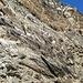 Bifertenstock Westwand