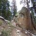 Die Waldgrenze ist wie üblich über 3000 m