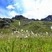 Der Wollgras-Blick zur Parzinnspitze