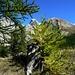 Descente du Colle Stroppia (2865m) vers Fouillouse