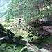 wie im Tessin...Trümmer von Corte di Cima der Alpe Heustein