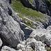 Die kaminartige Rinne von oben. Tolle Felsqualität in diesem Bereich. Niemals schwerer als III.