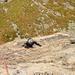 [u mde] in der ersten, etwas brüchigen Seillänge, [u Alpin_Rise]'s einziger Vorstieg in der Route