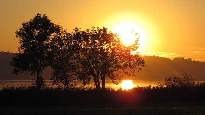 Ein Bild, das draußen, Sonnenuntergang, Natur, Sonne enthält.  Automatisch generierte Beschreibung