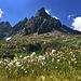 what a mountain!