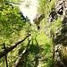 Wunderschönes Wandern