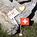 """<b>Un caro saluto a tutti gli amici di Hikr.org da siso!<br />La perla di saggezza odierna:<br />""""La montagna è un fuoco dentro che non smette mai di ardere"""". <br />Oliviero Bellinzani.</b><br />"""