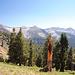 Blick Richtung Süden, links müsste der Vandever Mountain sein, der weiße flache der White Chief Peak und daneben der Hengst Peak
