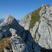 Übers Gras führt die Aufstiegsroute zum Gipfel des Rotenchaschte