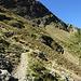 Der Weg quert unter dem Howitzgrat zu Pkt. 2415